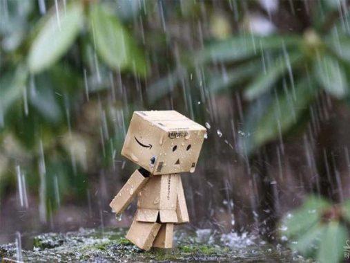 Mơ thấy mưa báo hiệu điềm gì, đánh con nào trúng lớn?