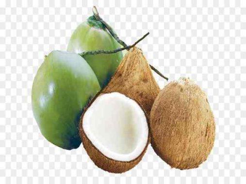 Mơ thấy quả dừa có điềm báo gì? đánh số nào?
