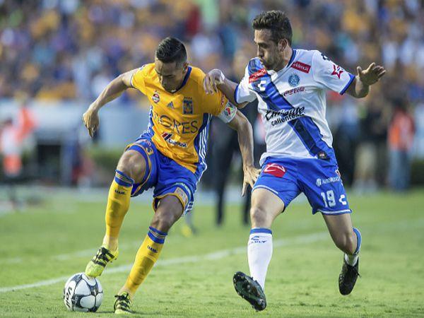 Nhận định soi kèo Tigres UANL vs Puebla