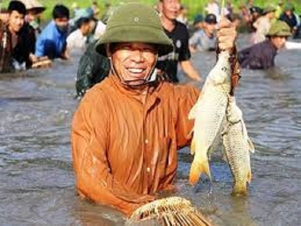 Mơ thấy bắt cá có điềm báo gì? đánh con số nào?